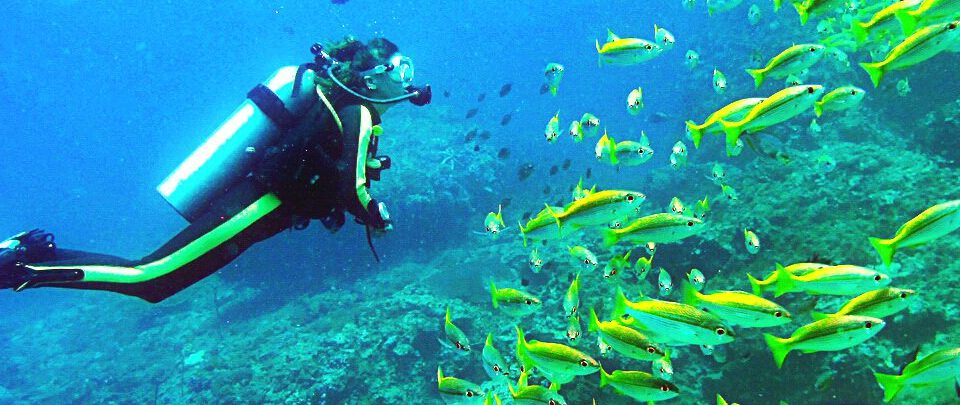 A Complete Guide to Diving in Zanzibar