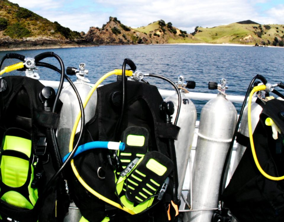 List Of Scuba Accessories Divers Can't Live Without